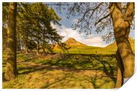 Through the trees to Roseberry Topping, Print