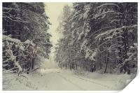 Blizzard in the Winter Woods , Print