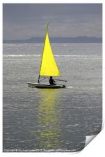 Learning to sail, Print