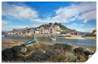 View of Nelson the seal across The River Looe , Print