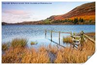 Loweswater in Autumn, Print