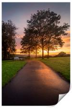 A path at dusk in Ravenhill park, Print