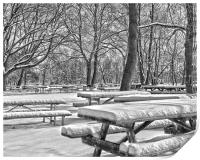 Picnic Tables In The Snow, Print