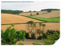 Chiltern View from A41 Bypass, Print