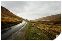 Country Road in the Lake District, Print