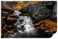 Autumn Colurs at Lumsdale, Print
