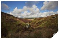 Rugged Exmoor, Print