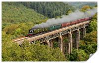 The Royal Duchy 34067 Tangmere, Print