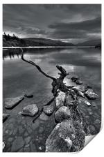 Evening At The Loch, Print