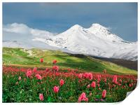Switzerland mountains on spring time, Print