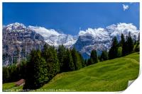 Alpine Meadow with Mettenberg and the Eiger, Print