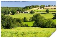 The Yorkshire Wolds, Print