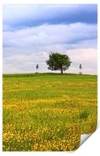 Scenic Scottish landscape with a lonely tree, Print