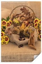 Autumn in a Basket, Print