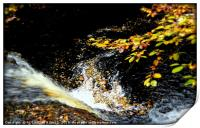 """""""AUTUMN LEAVES AT THE WATERFALL"""", Print"""
