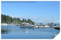 A nice place in Stanley Park,Canada,, Print