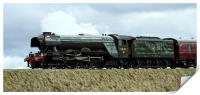 The Flying Scotsman approaching RIbblehead Viaduct, Print
