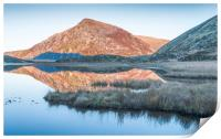 Winter reflections, Print
