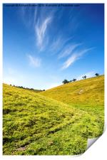 Sunny Afternoon At Deepdale, Print