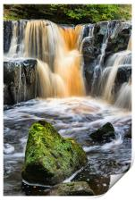 Nelly Ayre Falls, Print
