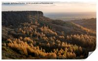 Autumn Colour at Sutton Bank, Print