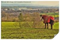 Horse and countryside, Print