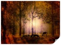 Deers In the woods, Print