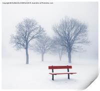 Winter trees and bench in fog, Print
