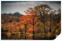 Autumn Colours at Rydal Water, Print