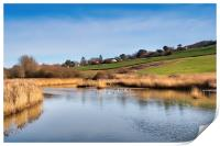 River Char at Charmouth, Print