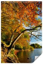 Autumn colours by Lake of Menteith, Print