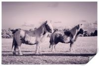 Ponies in the New Forest, Print