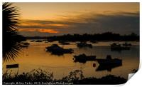 Silhouetted Boats in a Natural Harbour at Sunset, Print