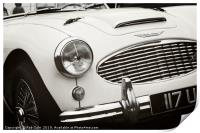 Austin Healey Classic Sports Car Front, Print