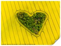 Heart of a nature, Print
