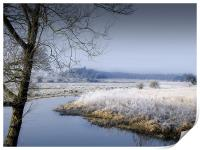 Frosty Morning by the River , Print