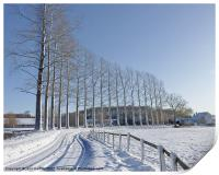 Poplar Trees Leading to the Old Mill, Print