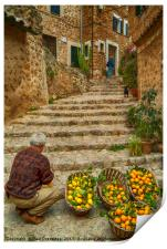 Oranges and Lemons at Fornalutx, Print