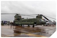 Boeing CH-47 Chinook, Print