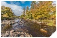 Autumn on the River Tees at Forest in Teesdale, Print