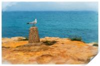 Digital painting of Seagull on Perch, Print