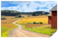 Country Road Through Fields in Late Summer, Print