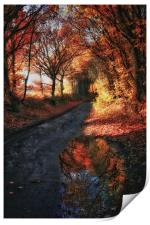 Reflections of Autumn , Print