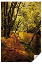 Beechwoods by the River Coe, Print