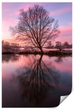 Tree on the River Bure, Print