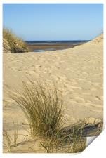 the Grasses and Sands of Wells Beach, Print