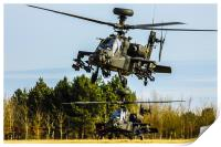 Two AH64 Apache helicopters, Print