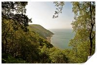 Foreland Point and the Exmoor Coast , Print
