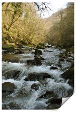 The East Lyn River near Lynmouth, Print