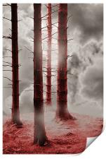 Forest Trees in Red, Print